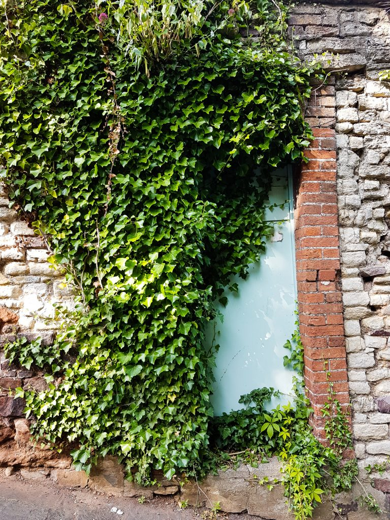 Door - Alfred Street, Bristol image