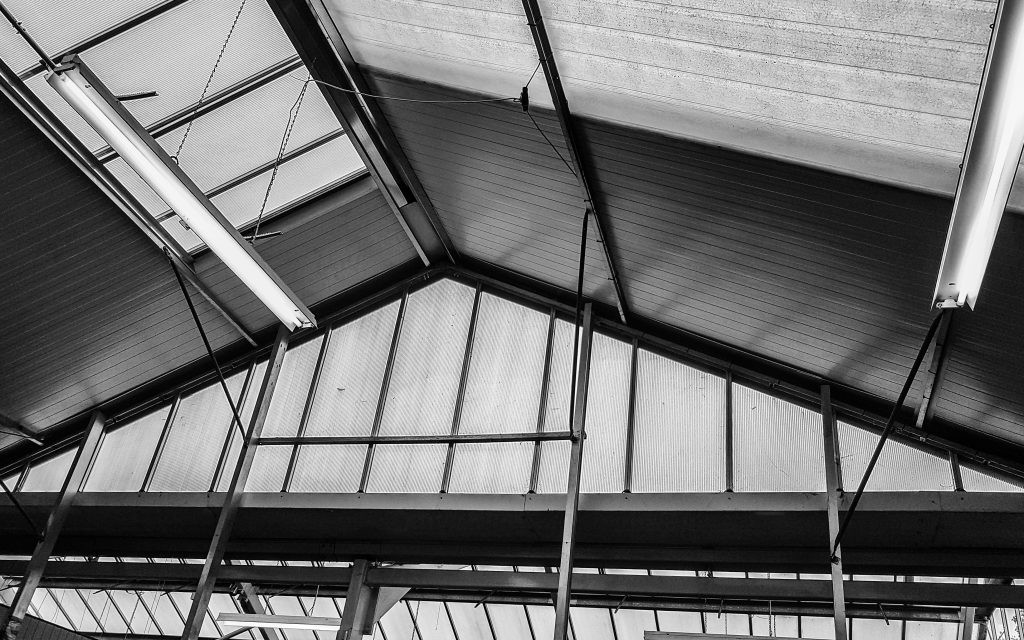 Greenhouse Roof B+W image