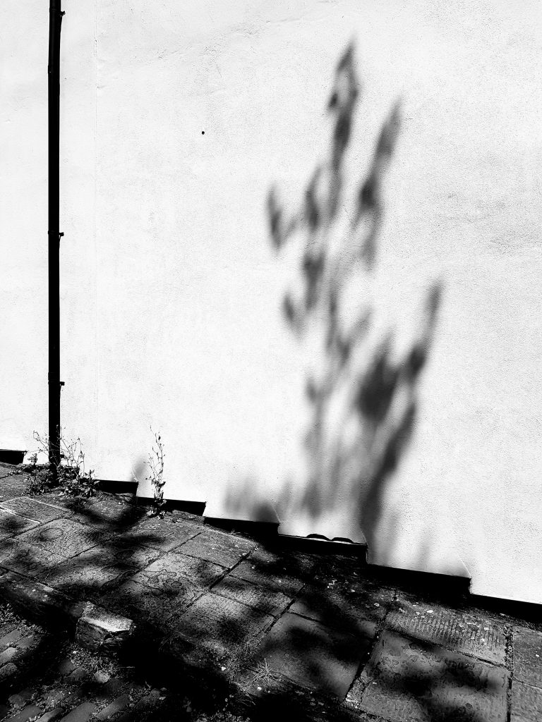 Shadow on the Wall B+W image
