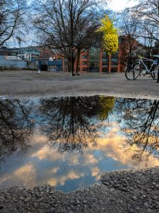 Reflections - Another Reflection image