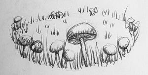 Fairy Ring sketch