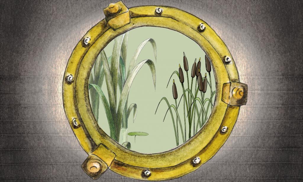 murpworks Porthole Reeds lrg image