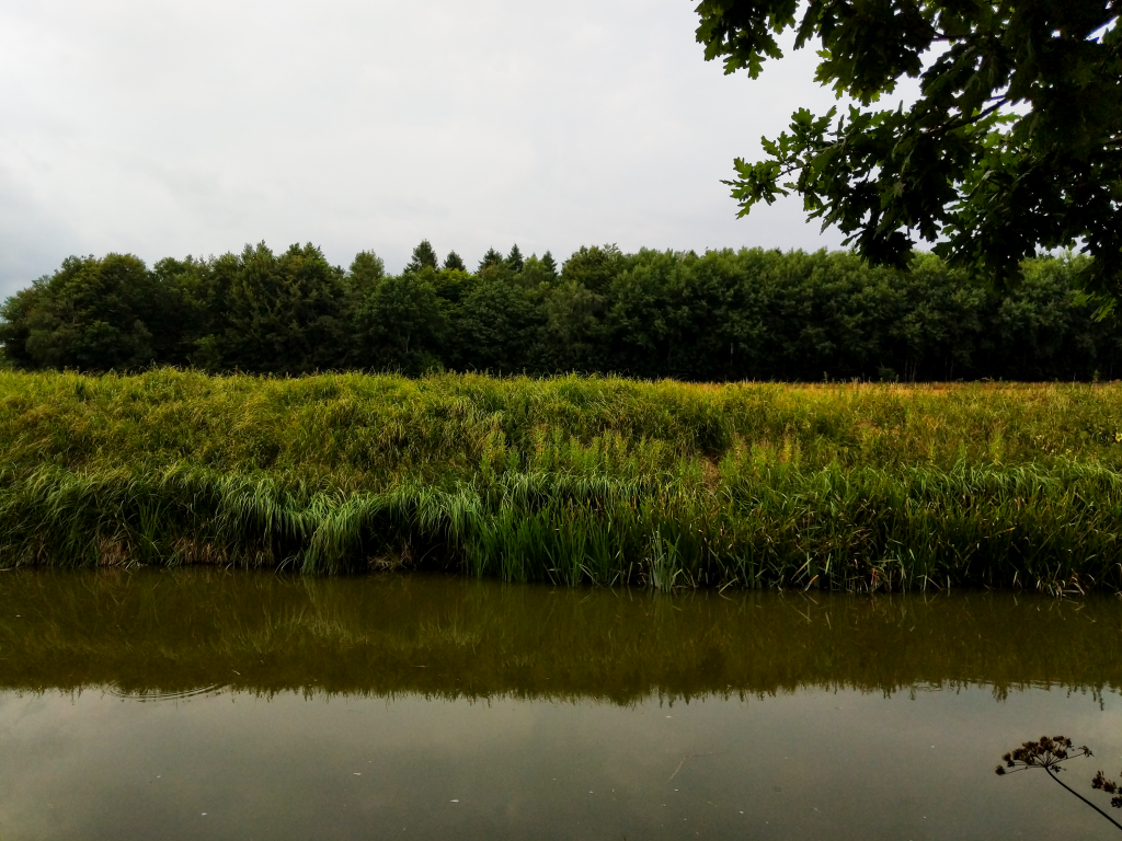 The Long Journey Home - Part 25 - view of the canal bank image
