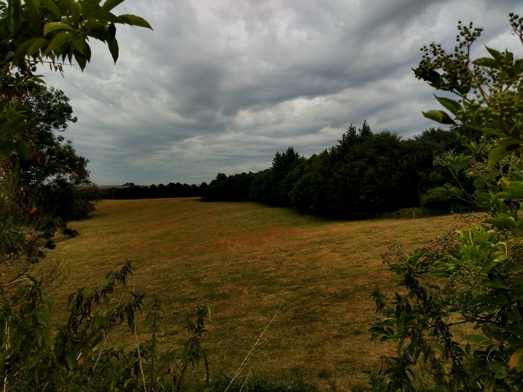 The Long Journey Home - Part 26 - field image