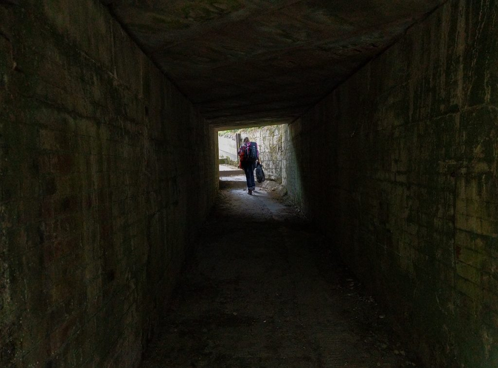 The Long Journey Home - Part 25 - tunnel vision image